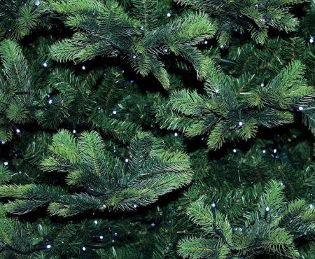 Worauf Sie beim Christbaumkauf achten können