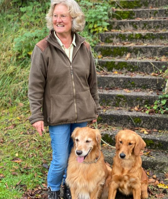 Barbara Bachleitner's Hundeschule